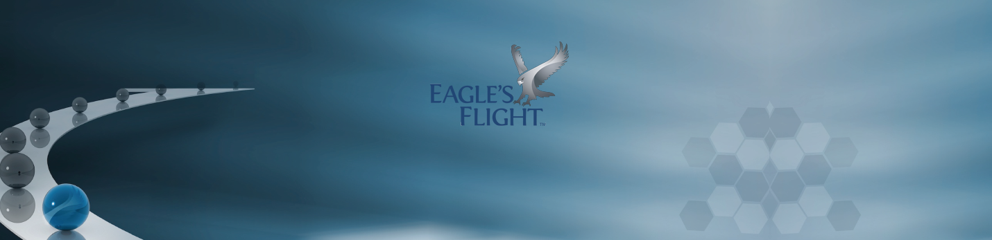 bg-eaglesFlight